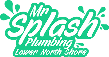 mr splash plumbing lower north shore